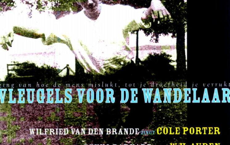 © Wilfried Van den Brande